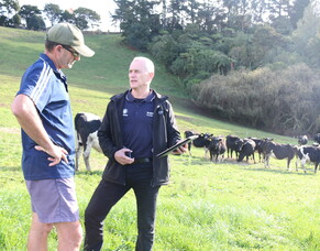 CLIENT NEWS:  Top tips for feeding cows this summer